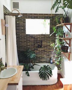 holborn - blog décoration d'intérieur - design d'espace - aménagement studio - Plantes vertes salle de bain